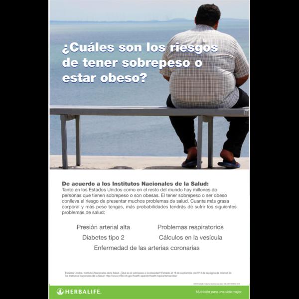 los-riesgos-del-sobrepeso-poster.png